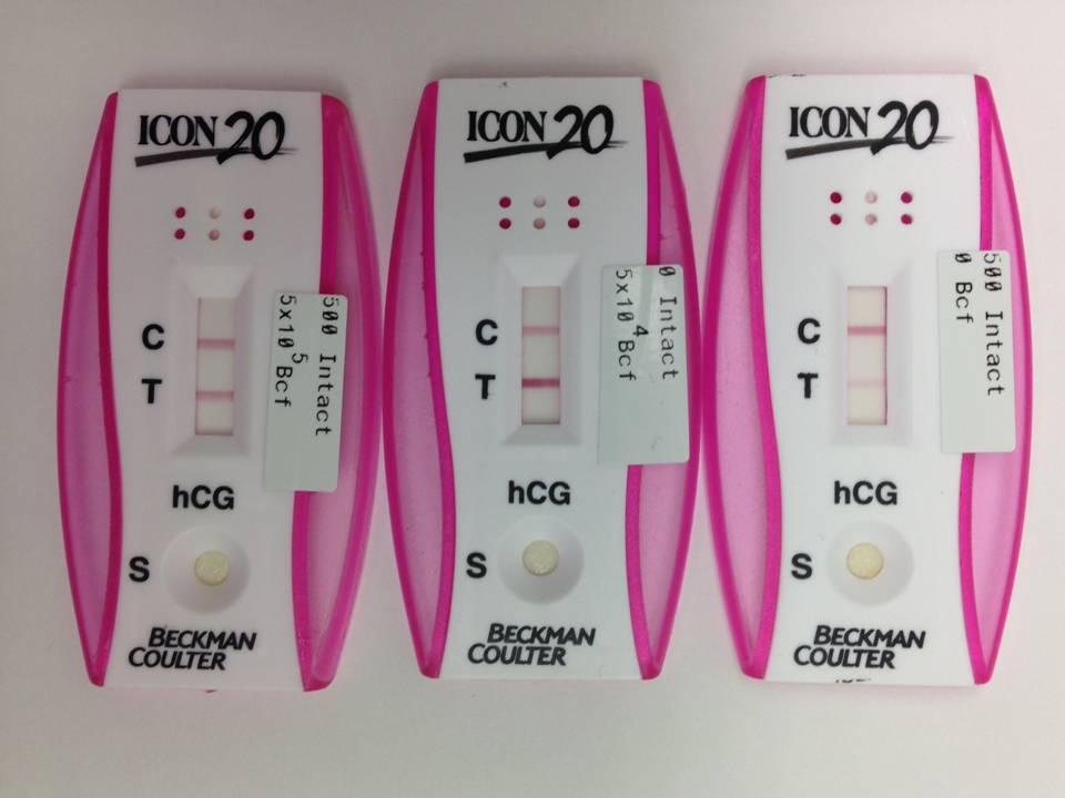 The Pregnancy Lab: hCG