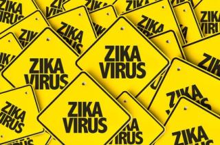 Zika3 figure